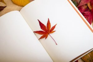 open book with blank pages aand a maple leaf on stting on top of page