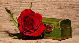 board with green chest and red rose